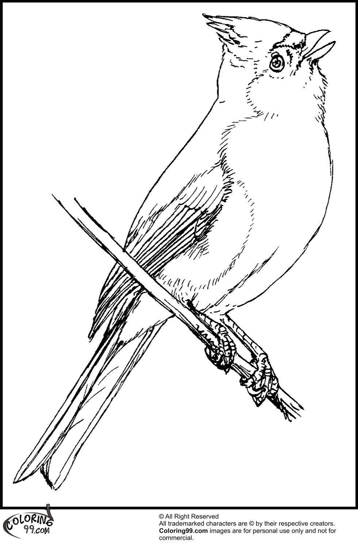 3bpblogspot Il1GwoxDEdQ Ui6ylP8IrHI AAAAAAAAGJU NbVgNamcMVQ S1600 American Cardinal Bird Coloring Pages