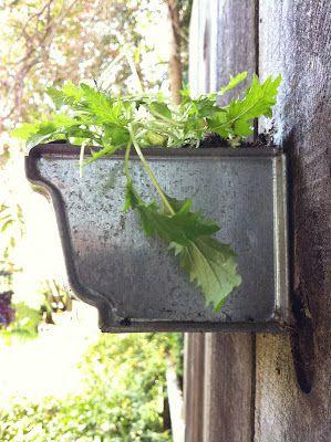 Corner Blog How To Build A Gutter Garden Gutter Garden Fairy Garden Diy Garden Yard Ideas