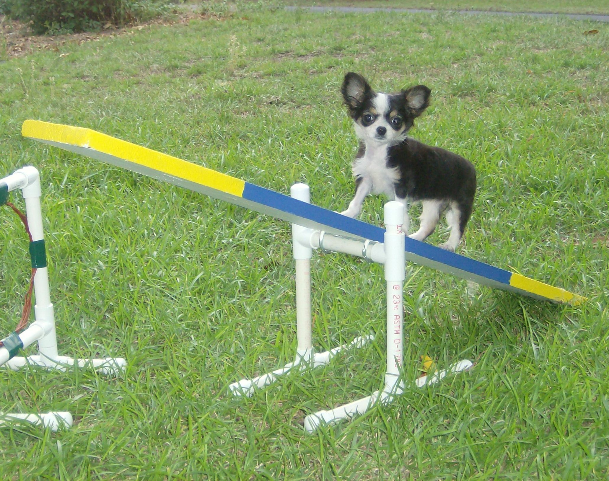 how to make agility equipment