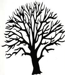 Image result for leafless tree