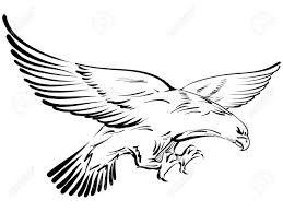 r sultat de recherche d 39 images pour aigle dessin aigle pinterest aigle recherche et images. Black Bedroom Furniture Sets. Home Design Ideas