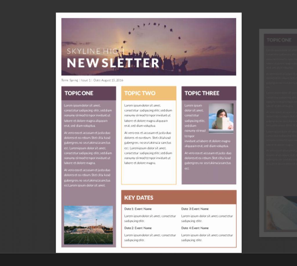 40 Free Publisher Newsletter Templates Newsletter