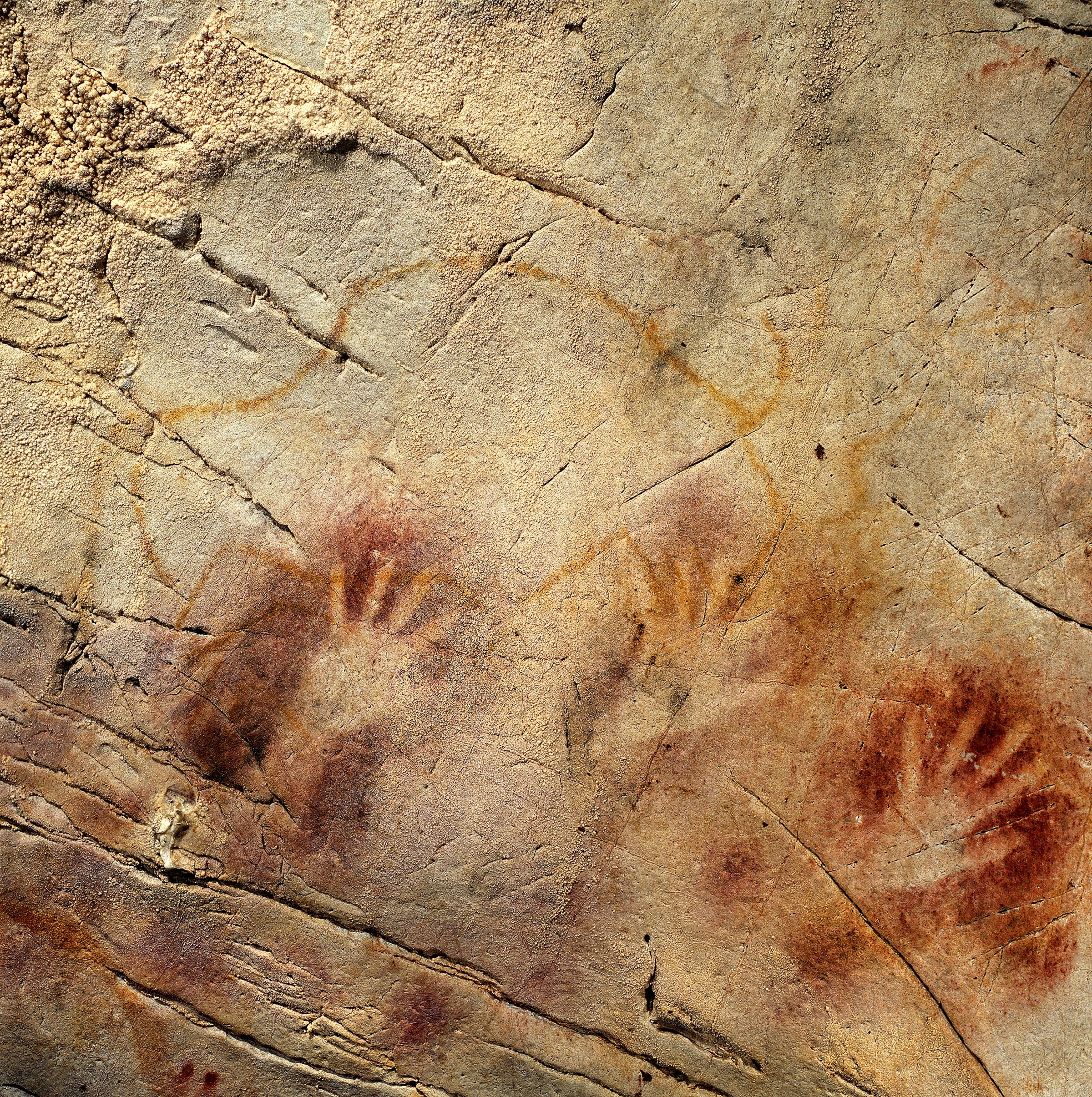 El Castillo Hands Oldest Cave Paintings May Be Creations