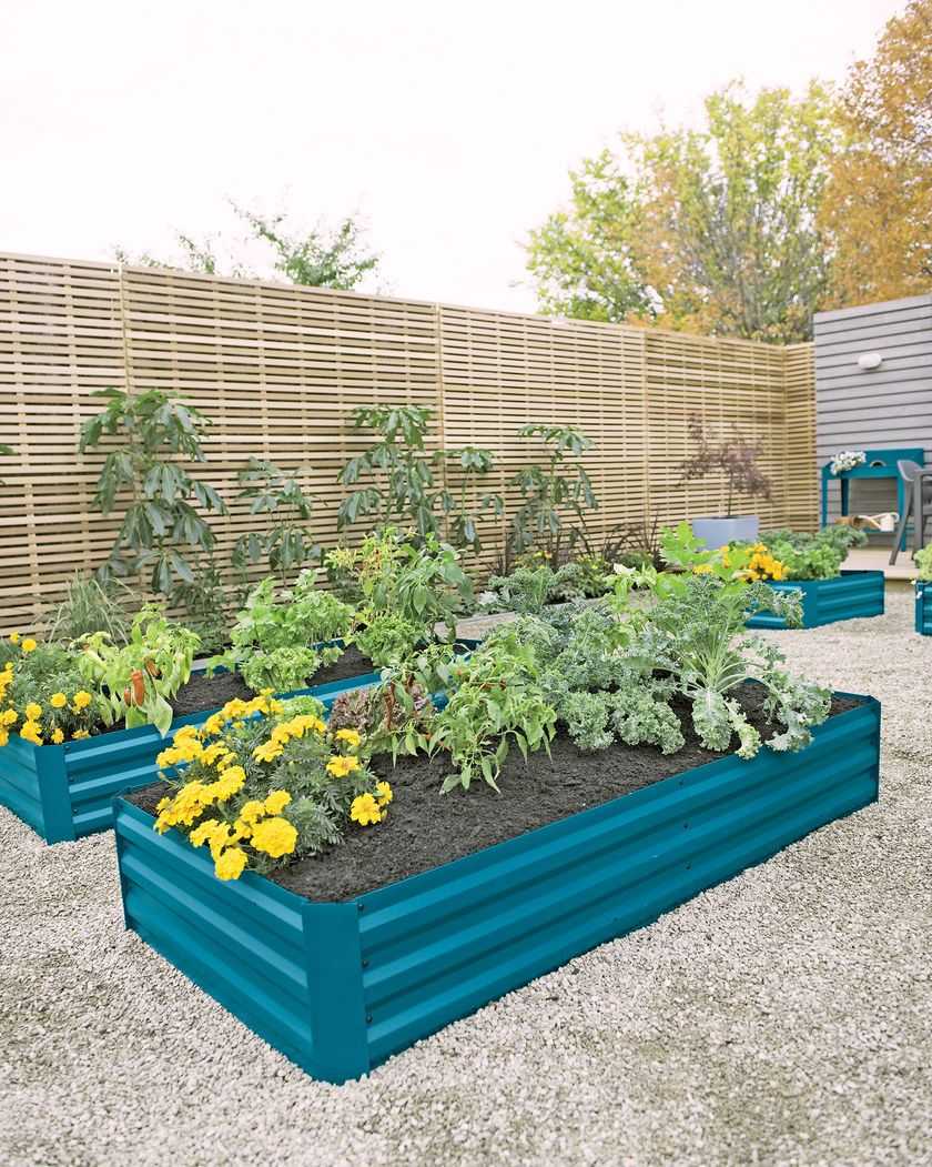 Metal Raised Garden Bed 34 X 68 99 Orders Ship Free With