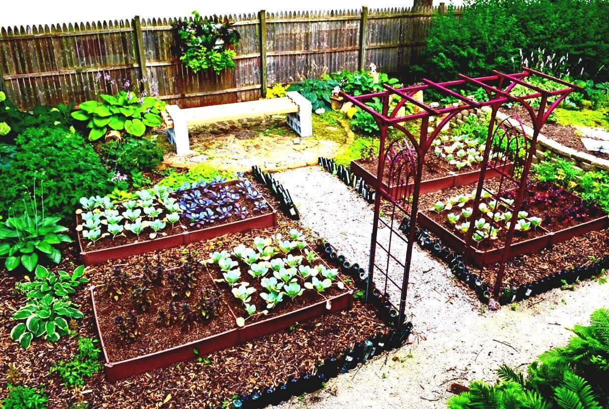 pin by organic garden on backyard garden | pinterest | small garden