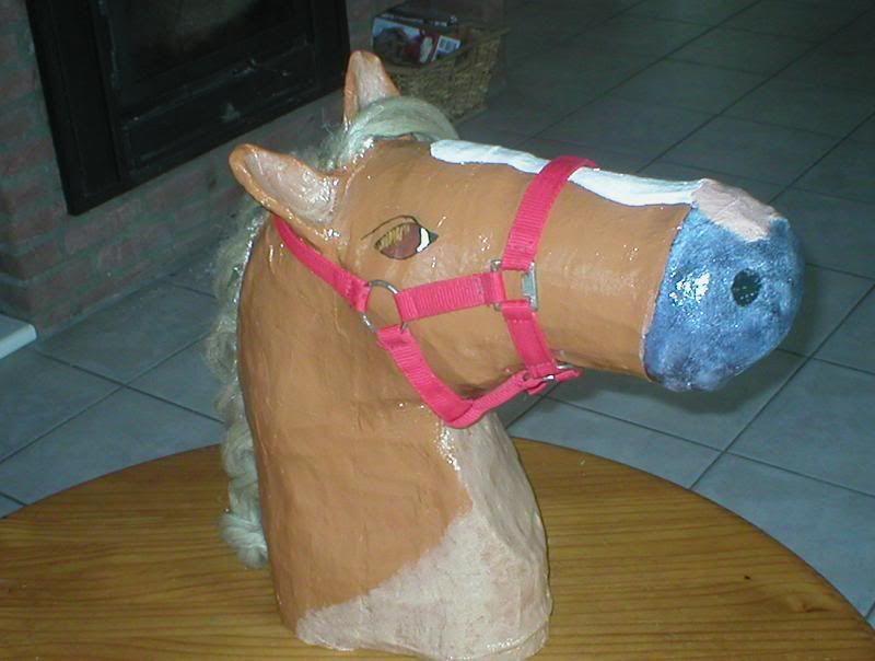 Ik heb 2 jaar terug een paardenhoofd gemaakt van for Huis maken surprise