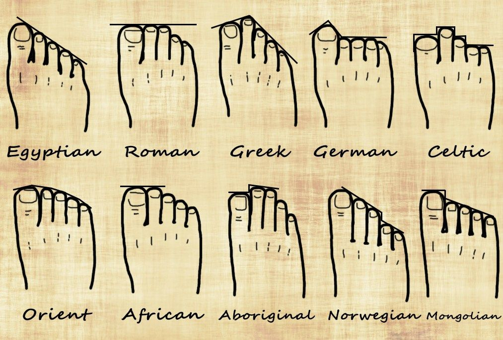 Your Foot Shape and Your Genealogy   Ancestral Findings   Genealogy, Dna  genealogy, Family genealogy