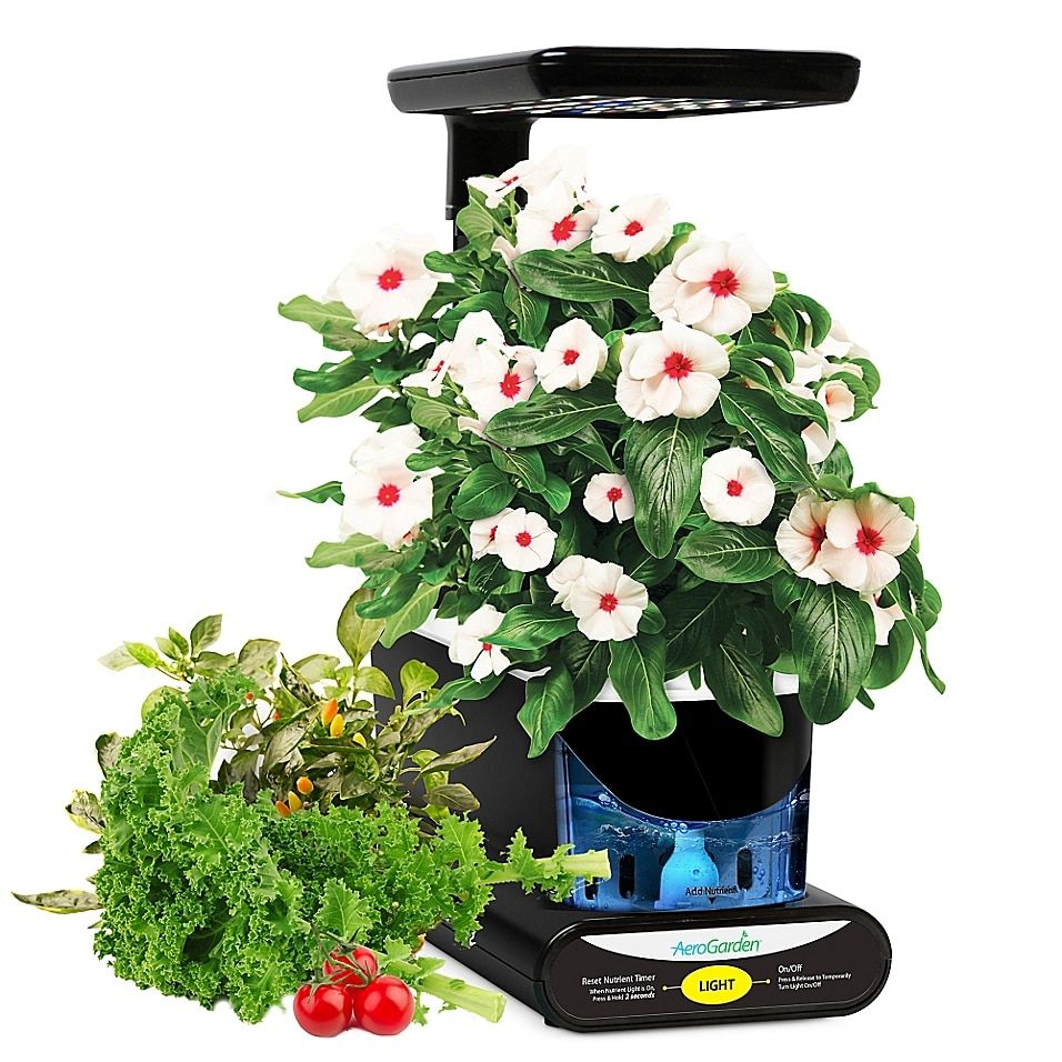 Miracle-Gro Aerogarden Grow Anything Seeds 3-Pod Kit Multi - The AeroGarden Grow Anything Seeds Pod Kit allows you to plant and grow your own choice of favorite seeds in the AeroGarden (sold separately). This kit comes with everything you need to plant and grow all year-round, no matter the season.