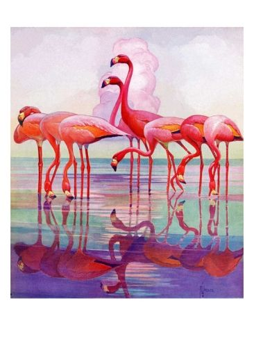 """""""Pink Flamingos,""""January 29, 1938 Giclee Print by Francis Lee Jaques at Art.com"""