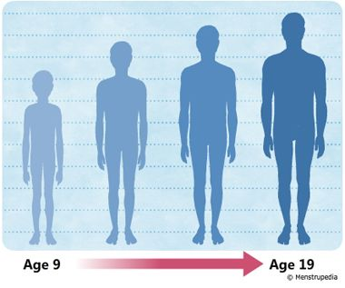 illustration of growth in height during puberty in boys from age 9 - boys growth chart