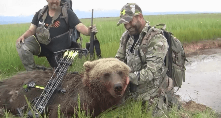 Cam Hanes Exciting AK Brown Bear Bow Hunt Raw Footage ... - photo#40