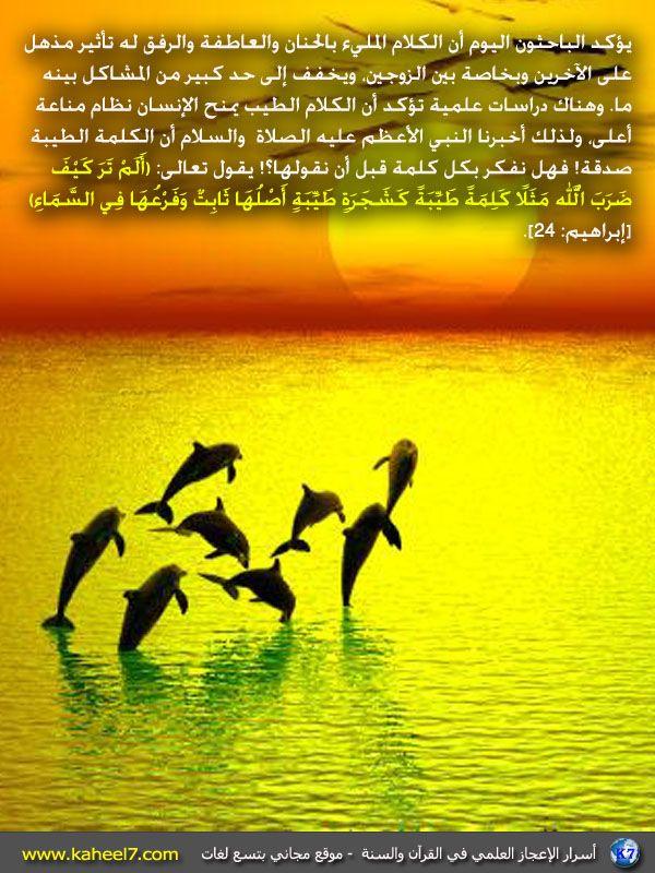 سبحان الله Islam Mind Map Movie Posters