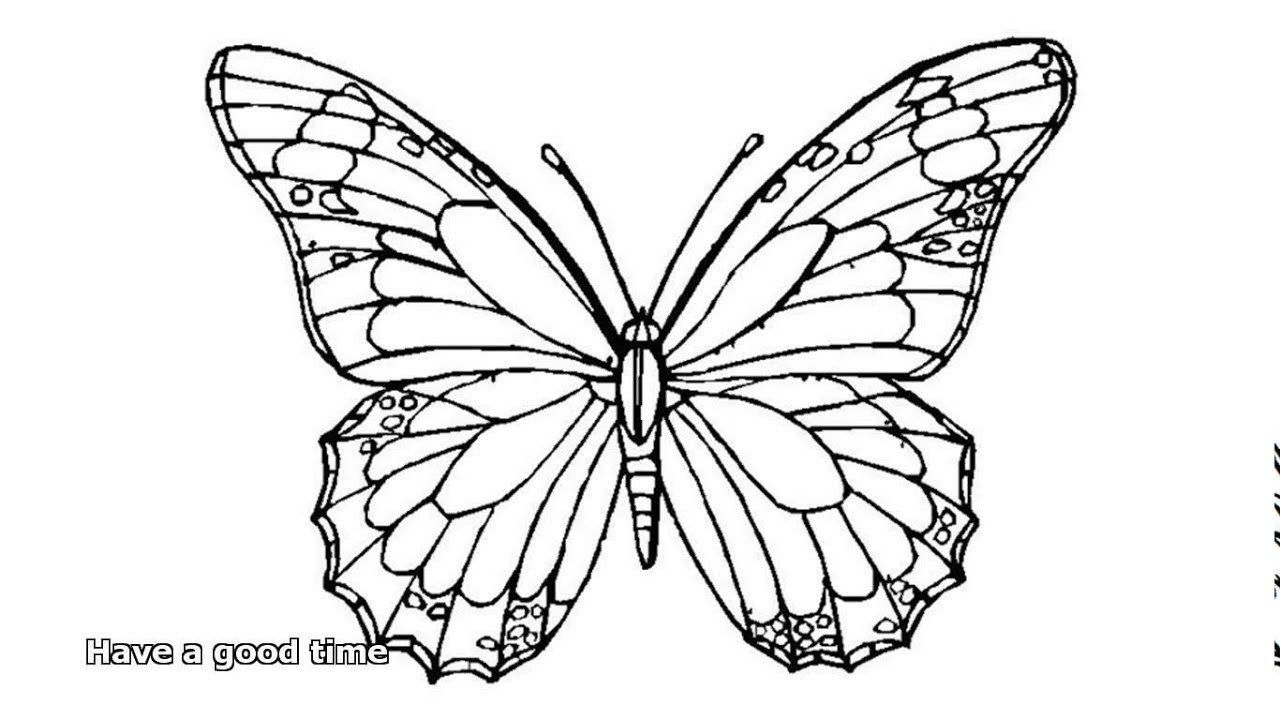 Monarch Butterfly Coloring Page Best Of Butterfly Coloring Pages For Coloring Page Butterfly Butterfly Coloring Page Tattoo Templates Butterfly Template [ 720 x 1280 Pixel ]