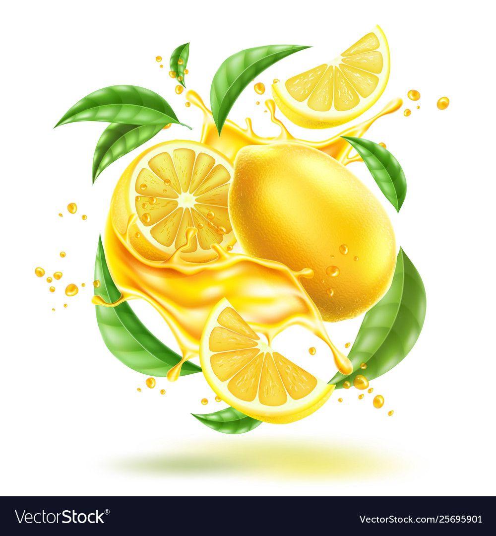 Realistic Lemon Splash Flow With Leaves Vector Image On Vectorstock In 2020 Leaves Vector Splash Creative Photography