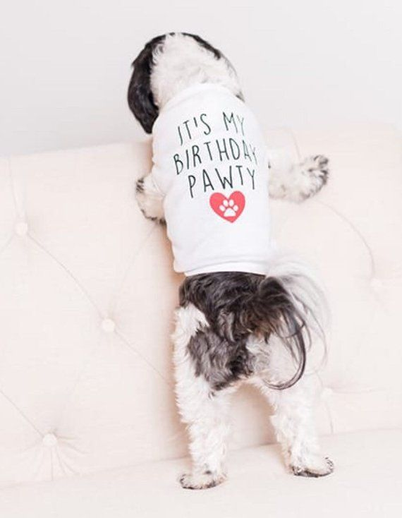 Its My Birthday Party Dog Shirt