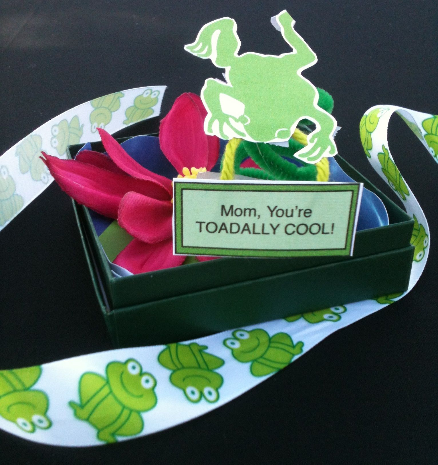 Toad in a box mothersday gift idea rock news pinterest