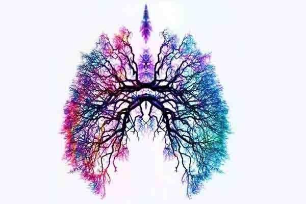 Ejercicios De Respiracion Para Desintoxicar Los Pulmones Remedios Para El Alma Arte De Anatomía Producción Artística Trabajos De Arte