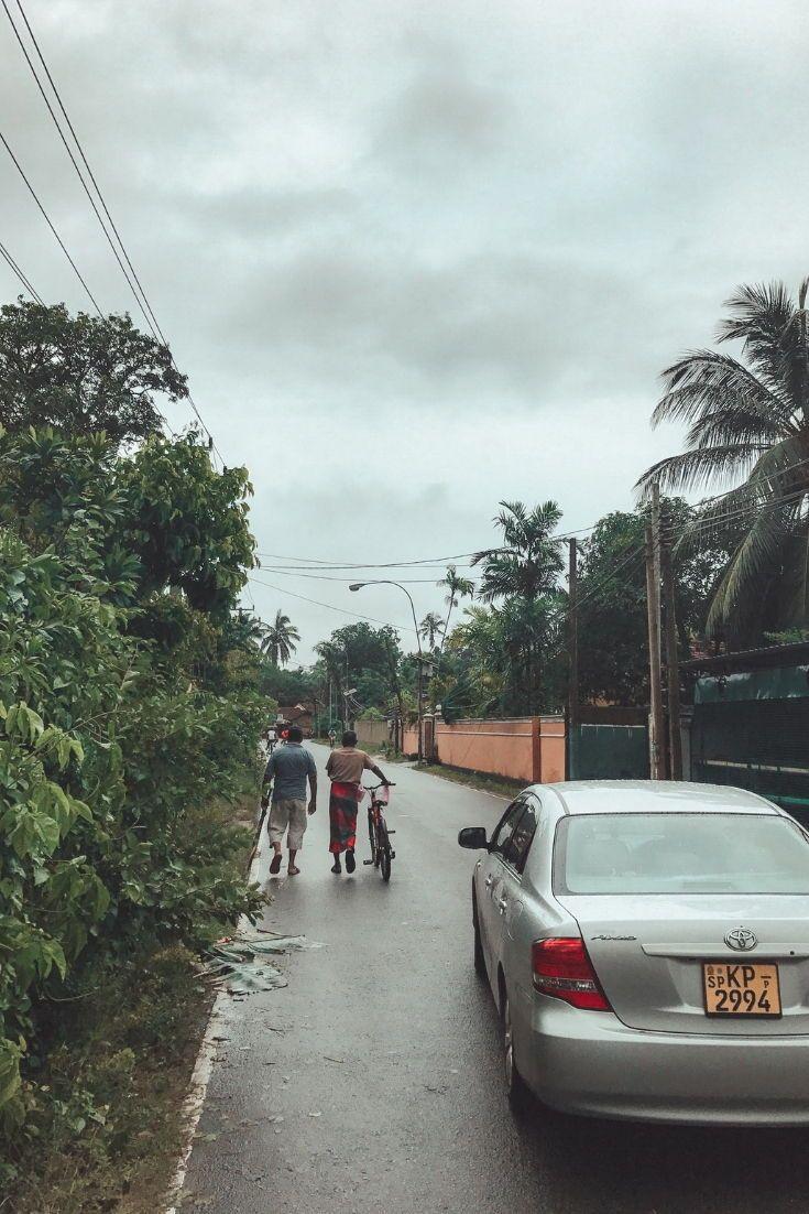 Sri Lanka - Beruwala, Bentota und Alutghama - Reisebericht - Sehenswürdigkeiten und mehr findest du auf Travelprincess.de  #srilanka #srilankareisebericht #asien #aluthgama #beruwala #bentota #travel #reisen #reiseblog #travelprincess #travelblog #reiseblogger #travelblogger #urlaub #wanderlust #reisebericht #travelguide