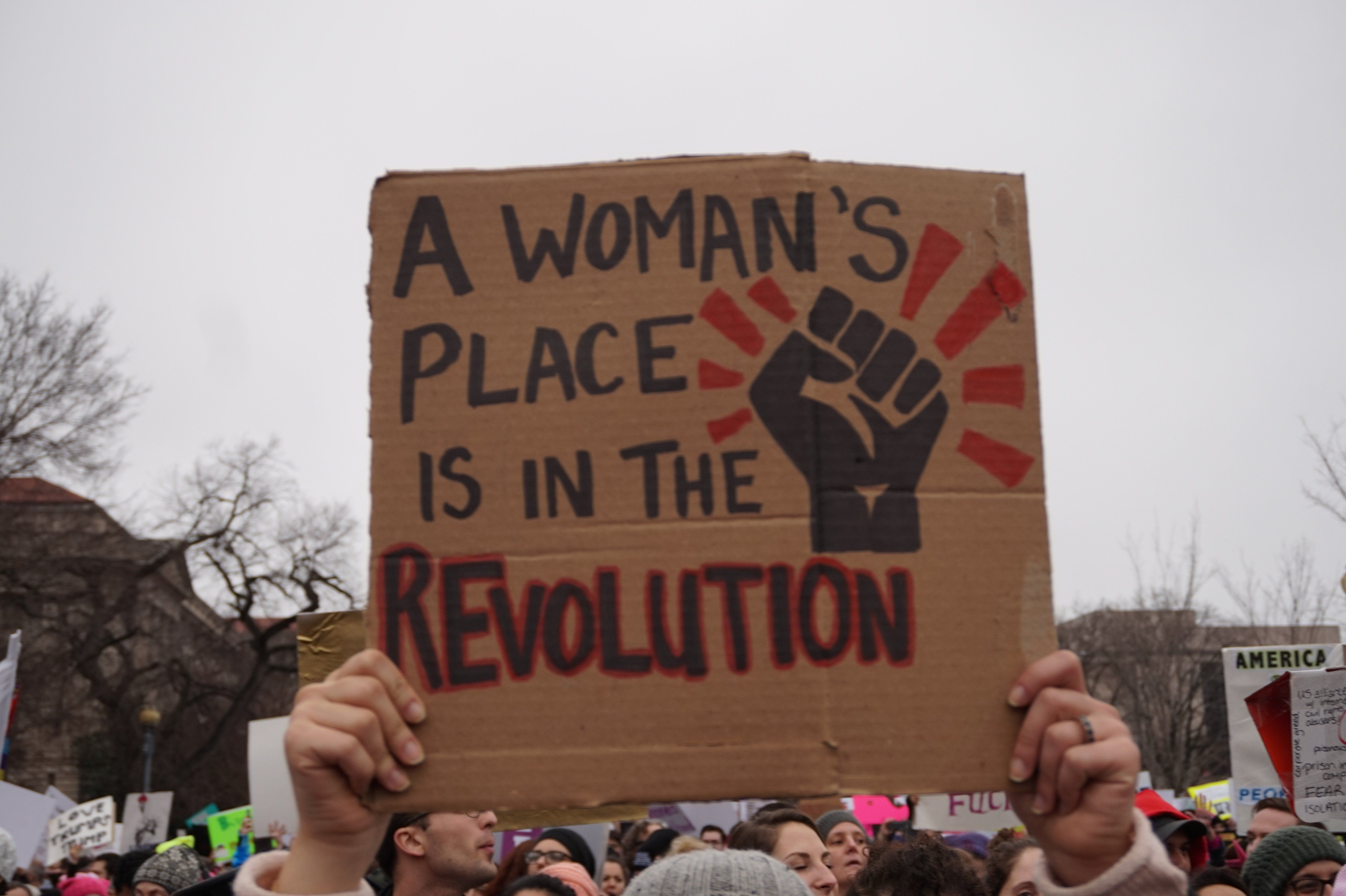 The Absolute Best Protest Signs From The Women S March On Washington Protest Signs Womens March Posters Womens March Signs