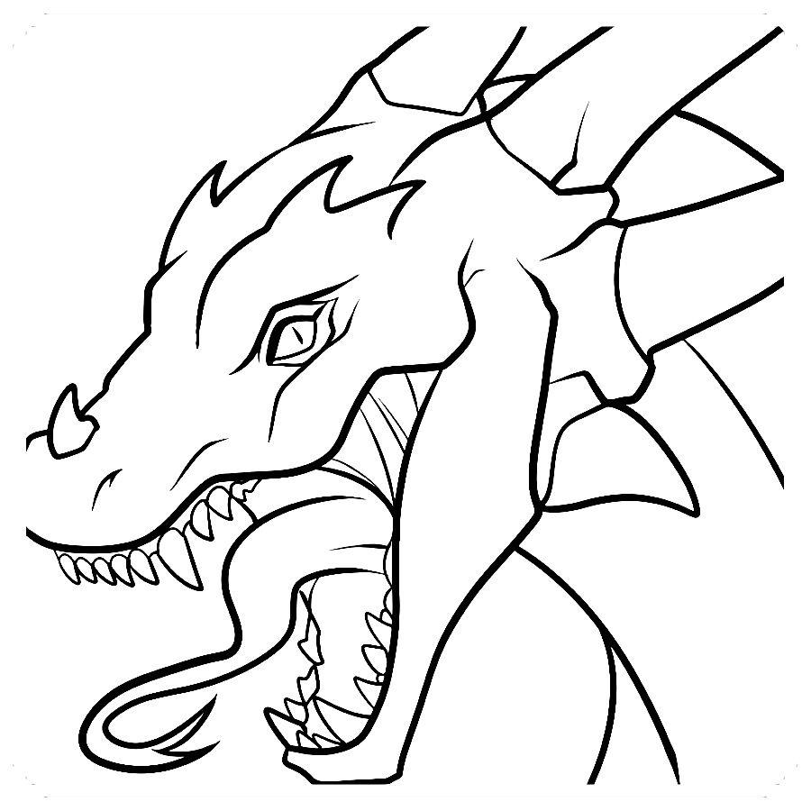 Pin De Jeremy Aidan En Dragones Dibujos Faciles Dragon Realista Dibujos Faciles Y Divertidos