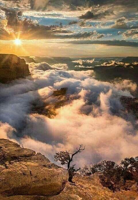Grand Canyon Arizona Com Imagens Lindas Paisagens Fotos De