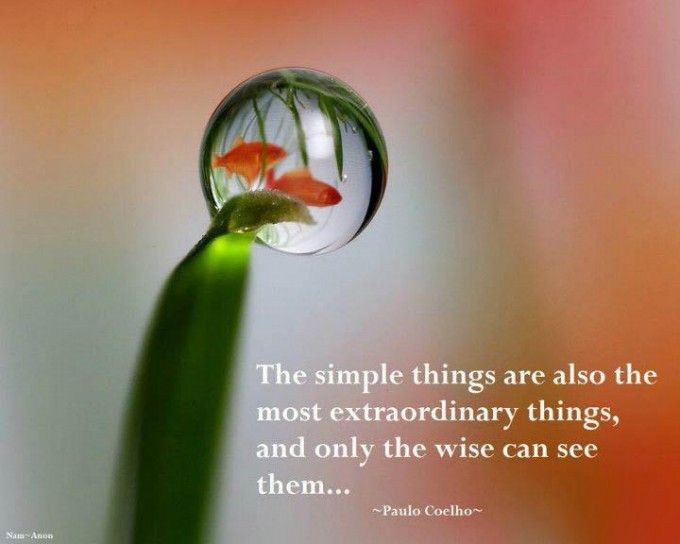 Most Beautiful Quotes About Life | quotes about beauty new ...
