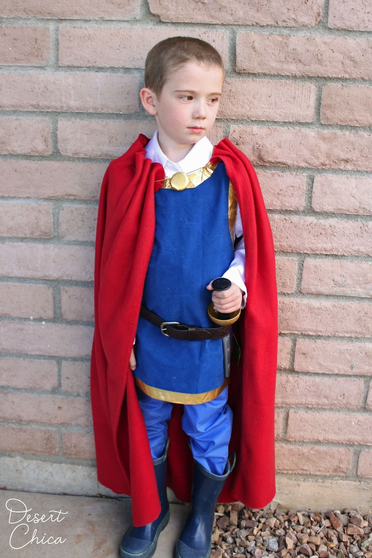 King costume - homemade cape | find joy in the journey | Pinterest ...