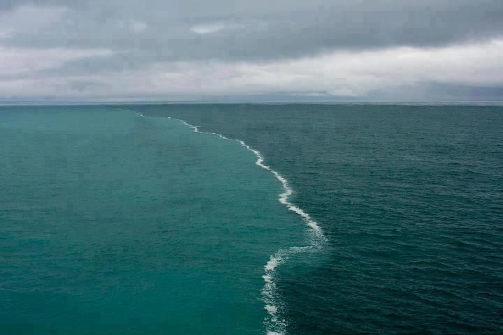 These two bodies of water were merging in the middle of The Gulf of Alaska and there was a foam developing only at their junction. It is a result of the melting glaciers being composed of fresh water and the ocean has a higher percentage of salt causing the two bodies of water to have different densities and therefore makes it more difficult to mix