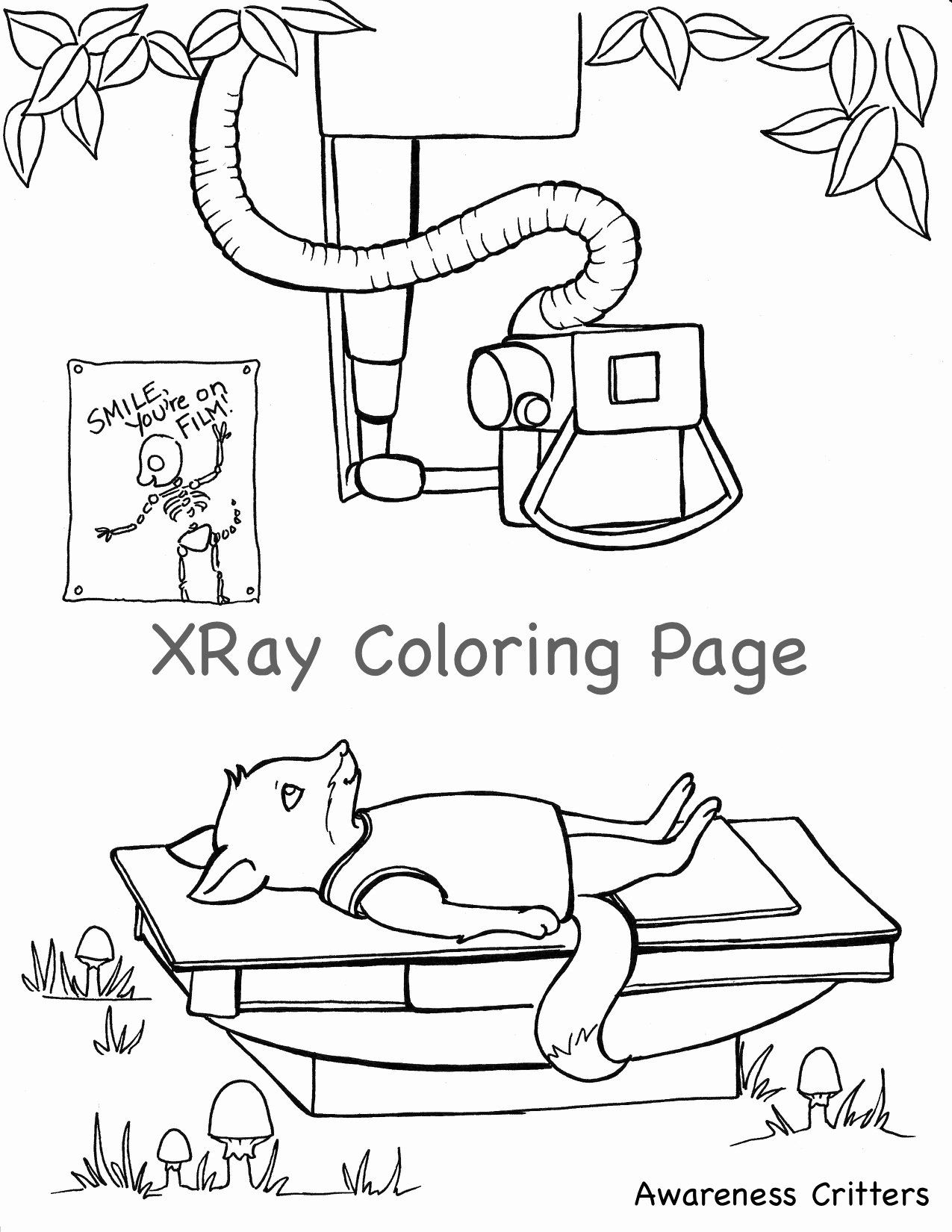 X Ray Coloring Page Lovely X Ray Coloring Pages For Kids Az Sketch Coloring Page Coloring Pages Kids Az Coloring Pages For Kids