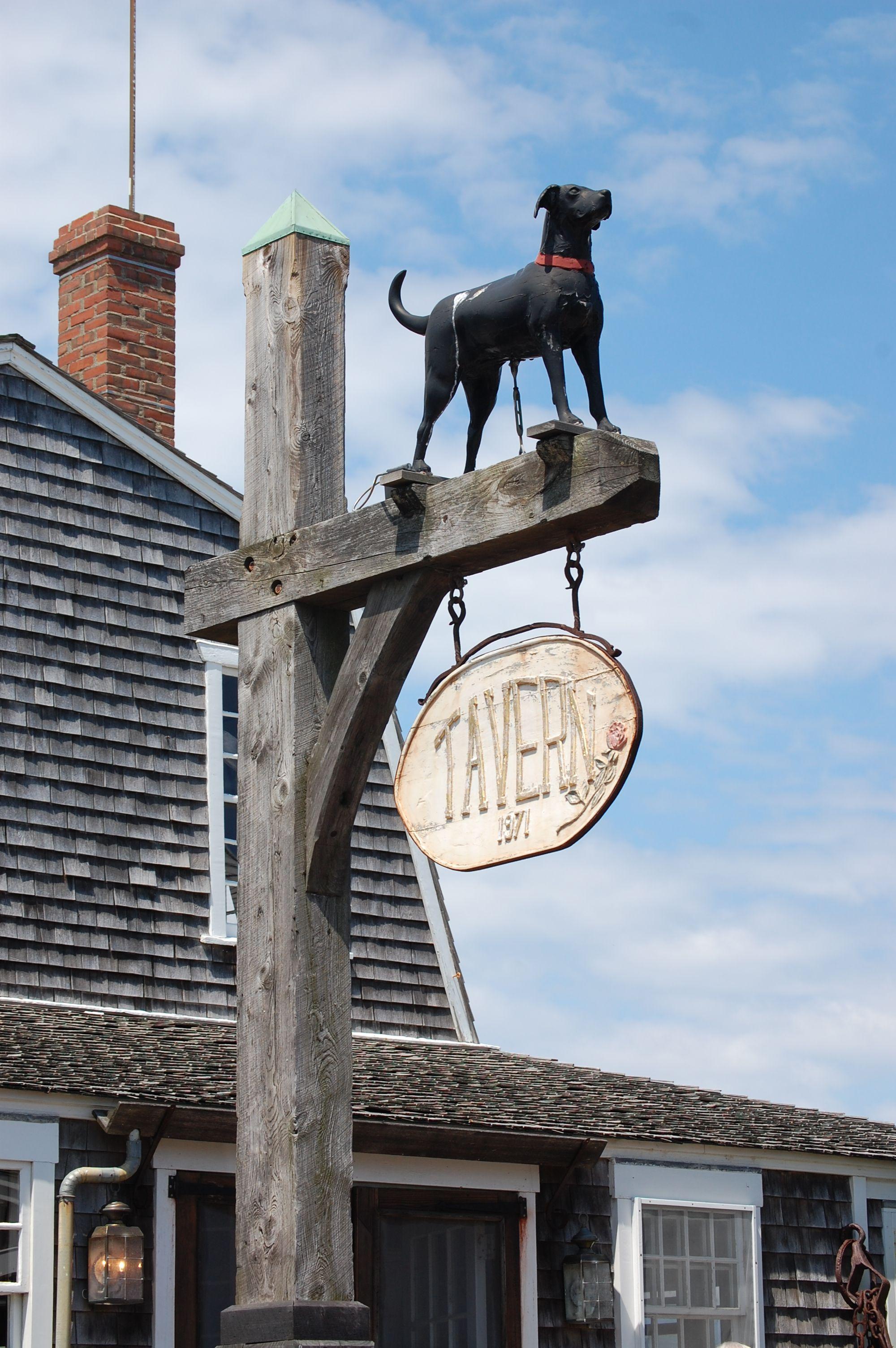 Black dog mv black dog new england favorite places