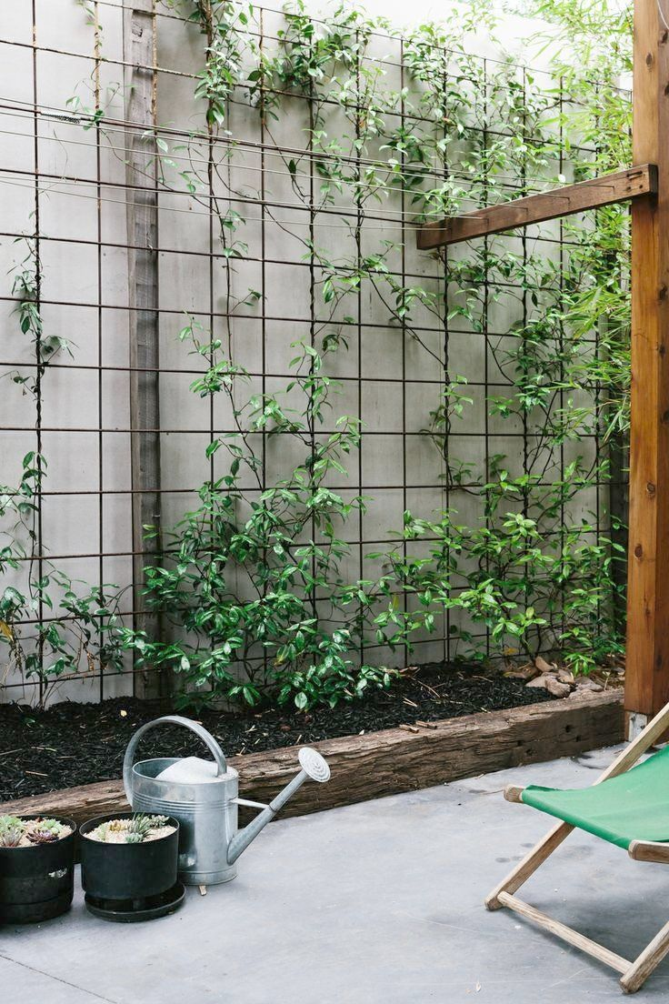 Attractive Wire Mesh For Gardens Reo Mesh Used For