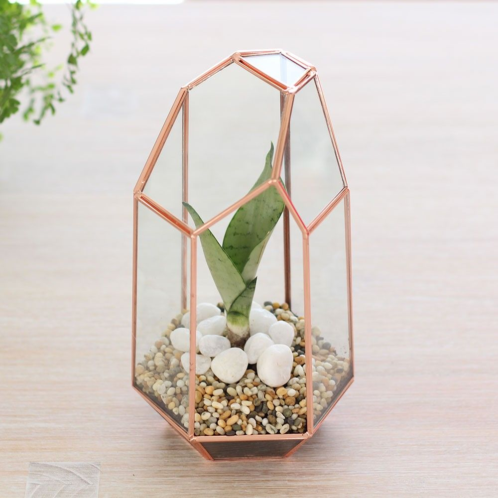 Tall Geometric Glass TerrariumIndoor Planter Copper Home