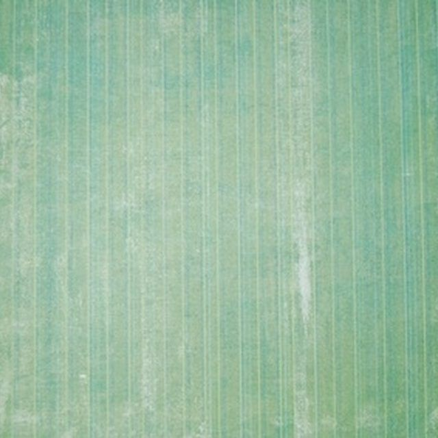 Tips for Painting Over Wallpaper Seams Old wallpaper