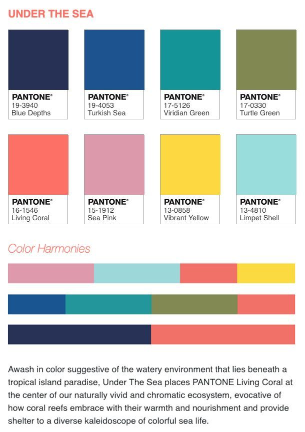 how to use the pantone color of the year 2019 we have created five different color palettes