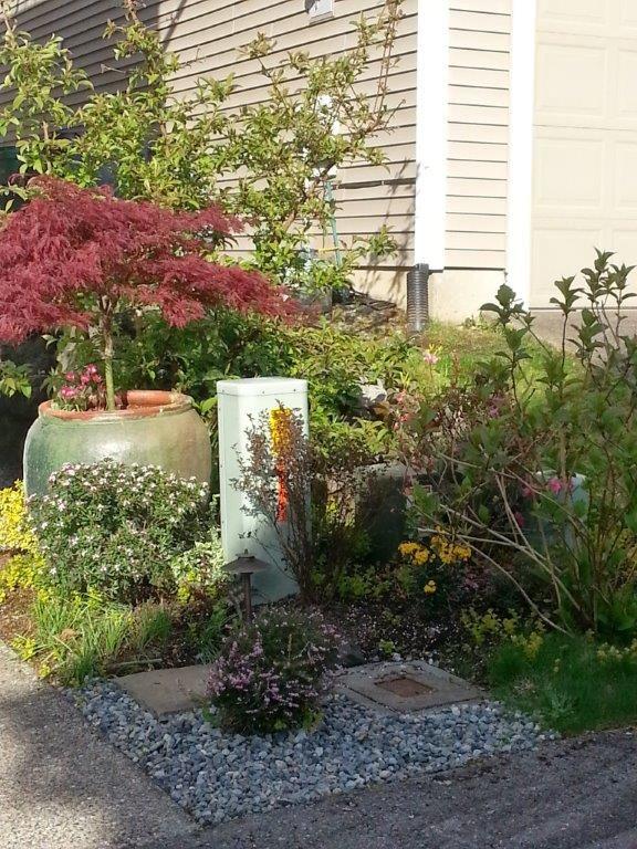 Jens Garden In Washington Day 1 Fine Gardening Gardens