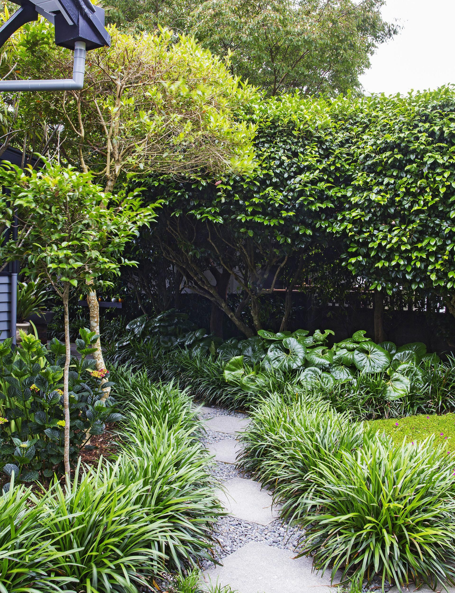 Landscaping Inspiration From A Structured New Plymouth Garden Homes To Love Backya Landscaping Inspiration Garden Landscape Design Backyard Garden Landscape