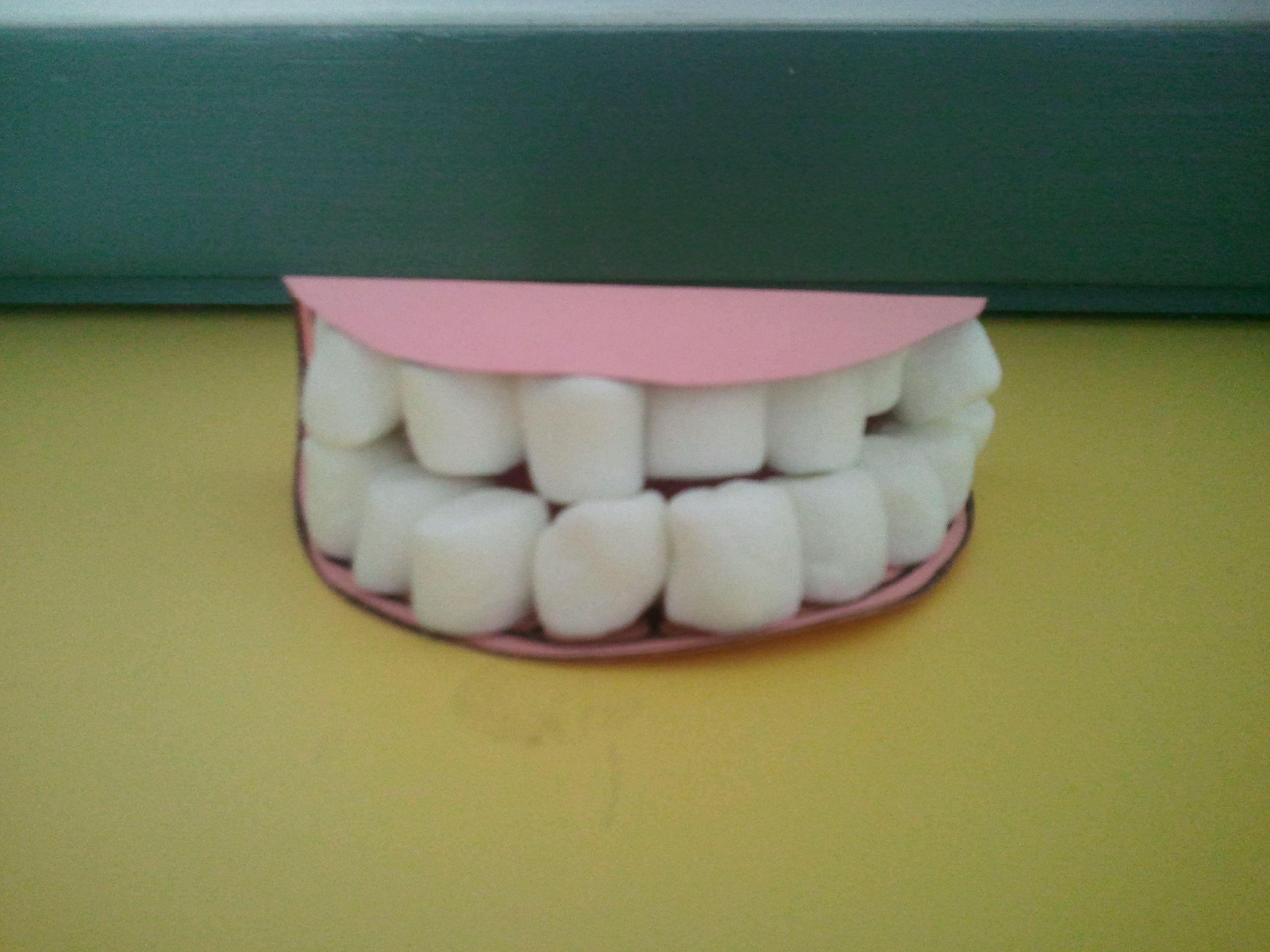 Brush Your Teeth, Mr. President | Dental health, Dental and Teeth