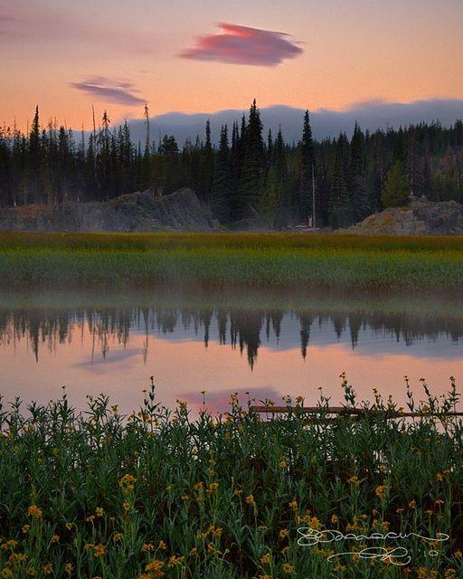 http://hikingdreams.tumblr.com/post/96826541129