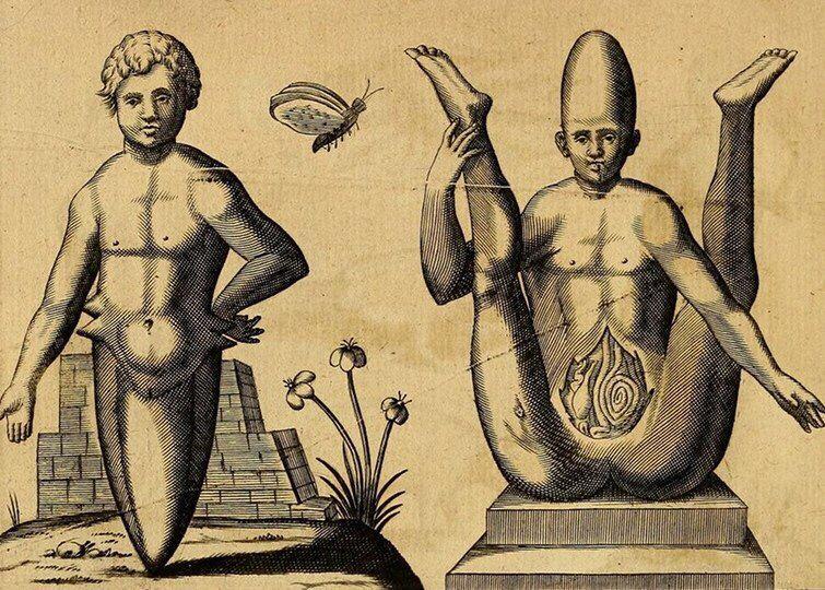 Fortunio Liceti. De Monstris. 1665.