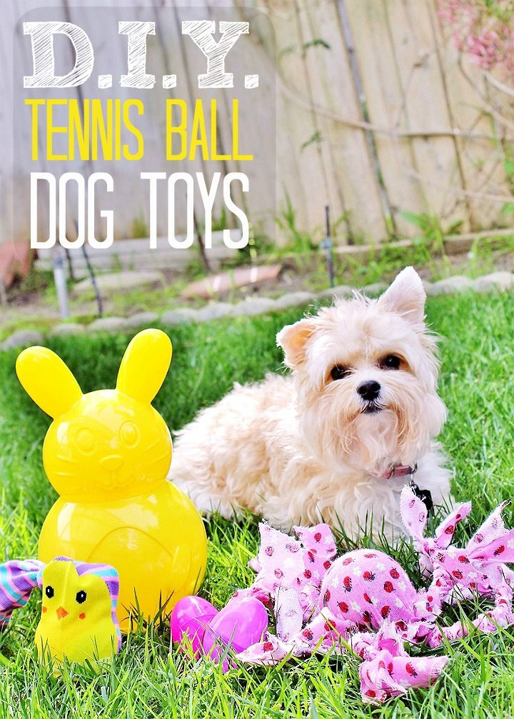 Affordable Ways To Celebrate Easter With Pets 5 D I Y Teepee 3 Dog Toys More Dog Toys Diy Pet Toys Diy Dog Toys