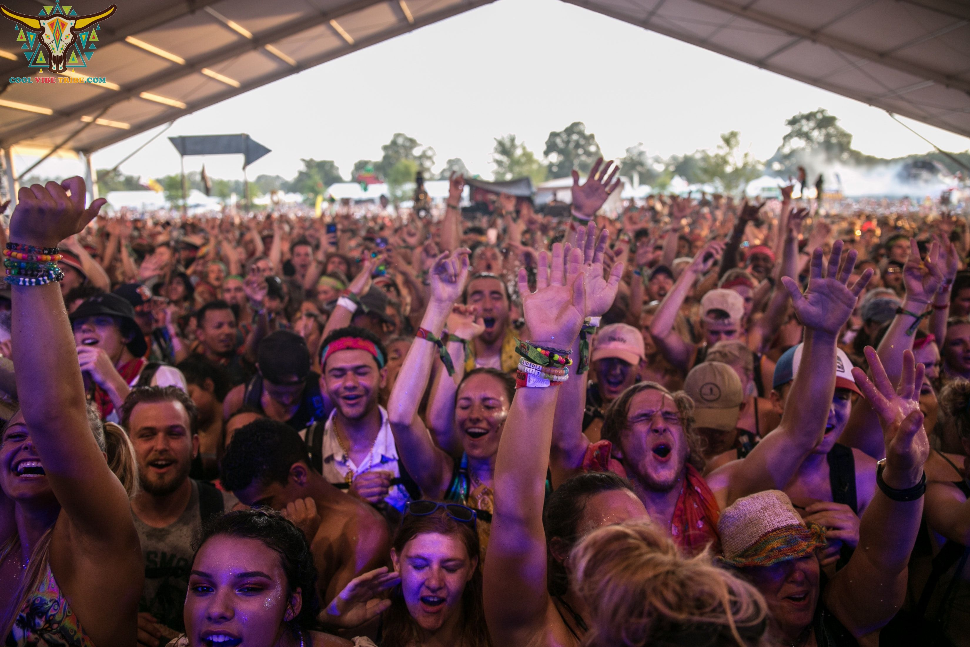 #tomorrowland #fesivals #festival #party #dancing #rave #house #housemusic #techno #techhouse #technohouse #dance #psychedelictrance #psychedelictrancemusic #fun #night #nightout #ozorafestival #ozora #boomfestival #Ilovetechno #rainbowpeople #musicfestival #musicfestivals #trip #trippy #acid #lsd #magicmushroom
