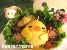 ・女の子用お弁当|kaerenmamaオフィシャルブログ「短時間でかわいいキャラ弁当」Powered by Ameba-32ページ目
