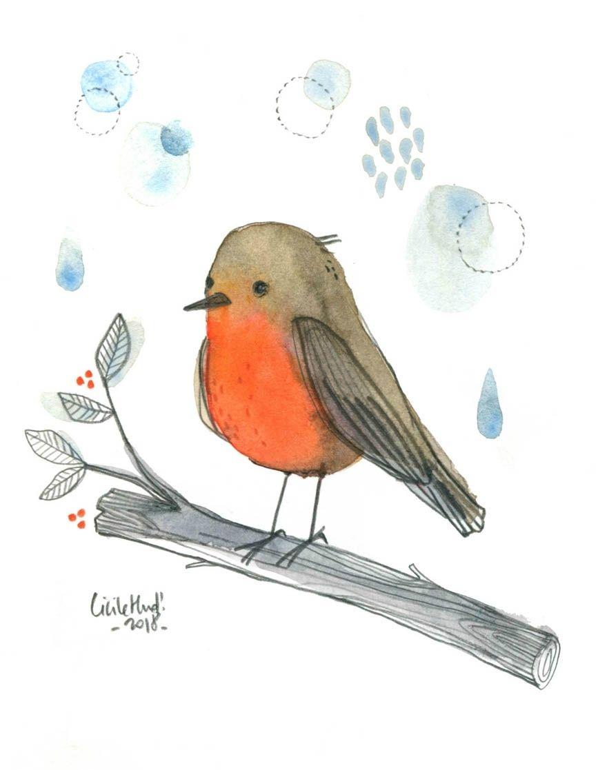 Rougegorge Cecile Hudrisier Oiseau En Aquarelle