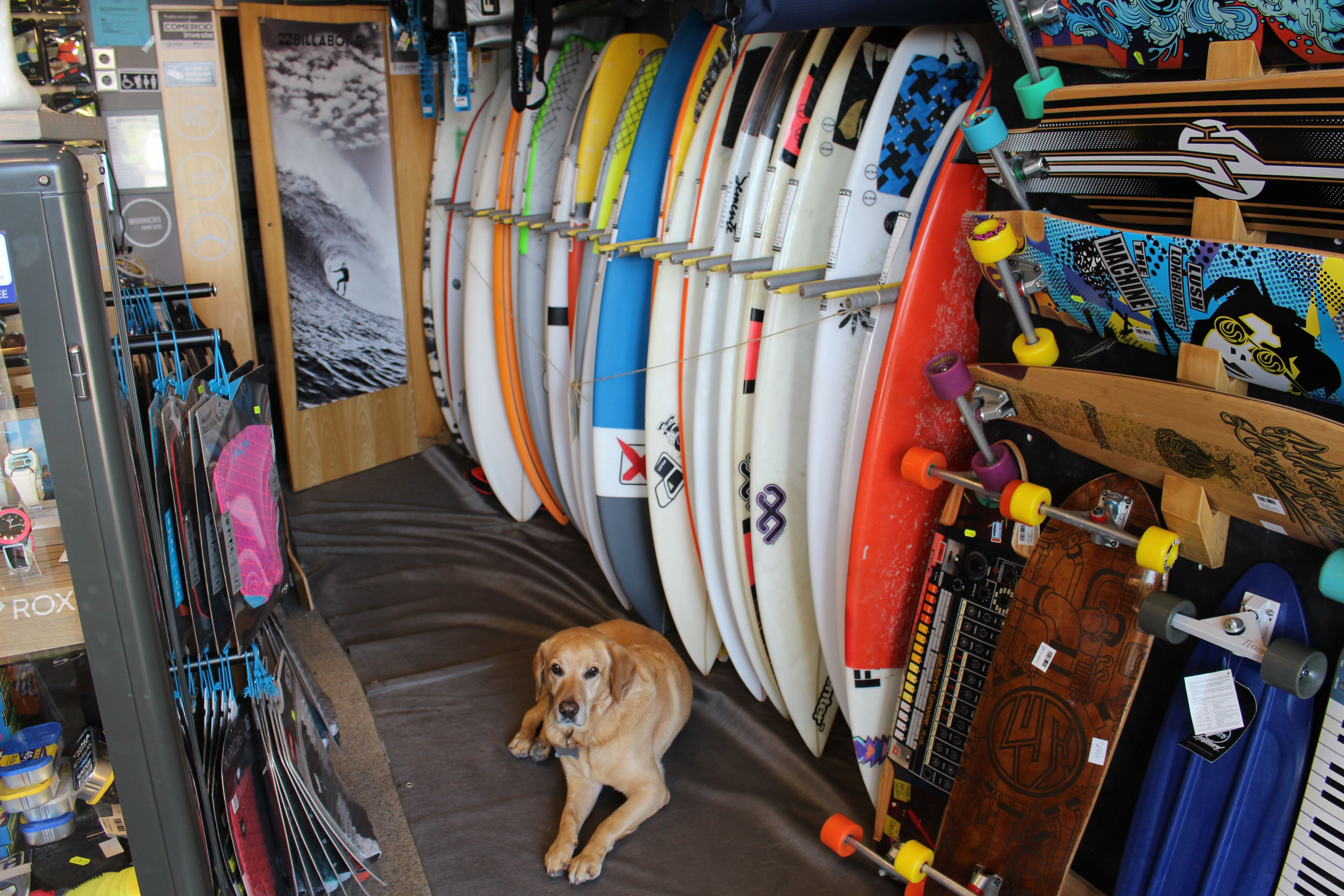 Surf Shop Located At Porto Portugal Surf Shop Surfing Shopping