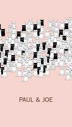 アンド ジョー 壁紙 ポール ポール&ジョー :