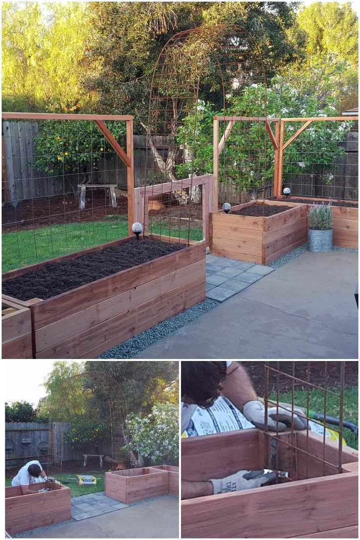 How to Build a Trellis: Inexpensive & Easy Designs