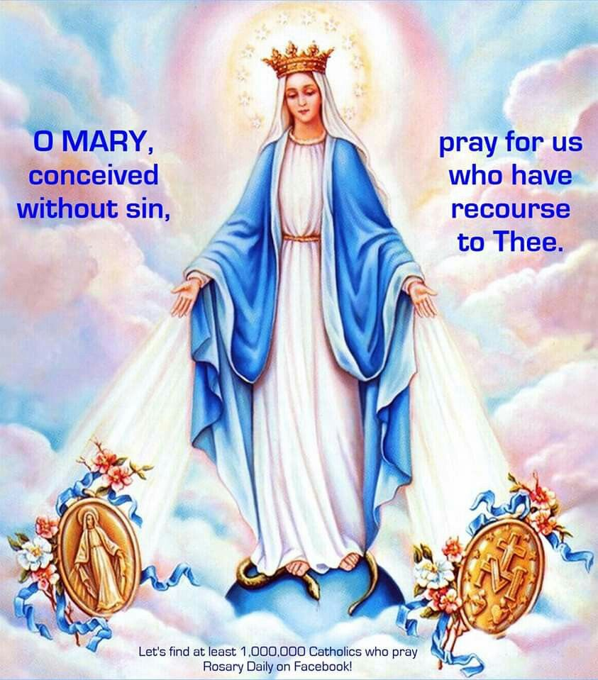 O Mary, conceived without sin, pray for us who have recourse to thee! | Mary and jesus, Blessed mother, Catholic mother
