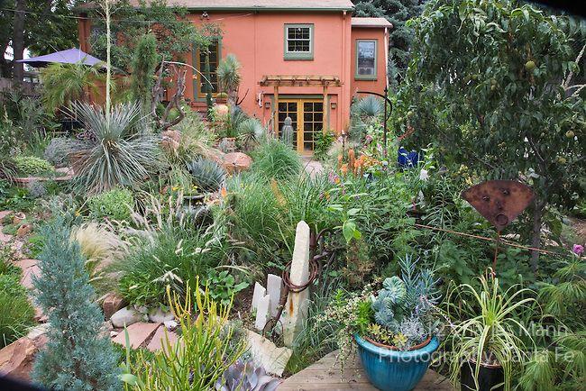 Dan Johnson's backyard Denver garden is an ever changing ...