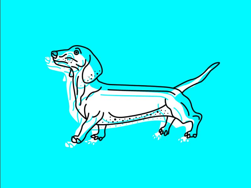 10 Awesome Dog Illustrations on Dribbble – Discover on disruptivedog.com
