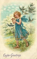 EASTER GREETINGS  fairy plays pipes, swallows follow